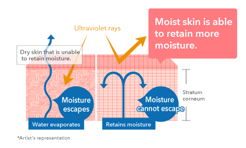 Moist skin is able to retain more moisture.