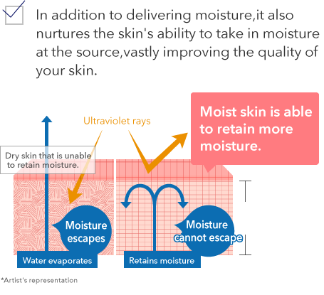 In addition to delivering moisture, it also nurtures the skin's ability to take in moisture at the source, vastly improving the quality of your skin.